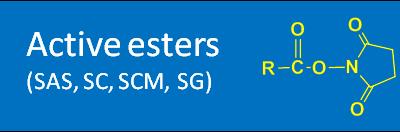 Active esters (SAS, SC, SCM, SG)