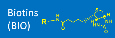 Biotins (BIO)