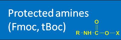 Protected amines (Fmoc, tBOC)