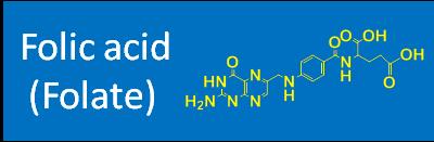 Folic acid (Fol)